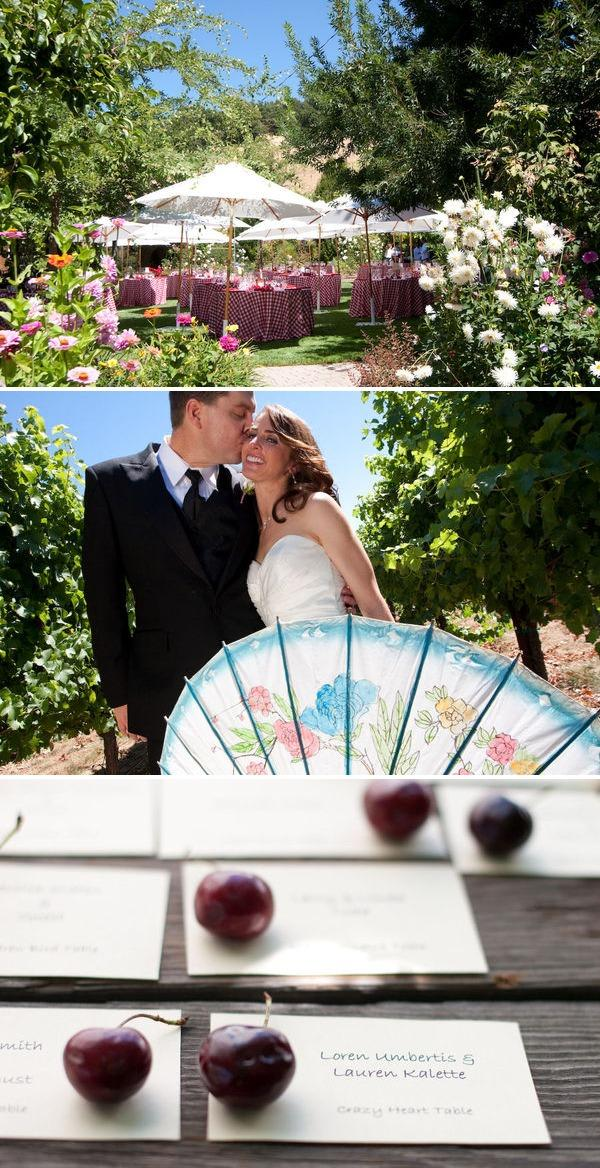 Sonoma Wedding IV