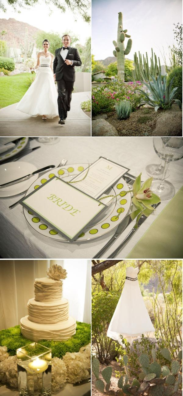 Arizona Wedding I